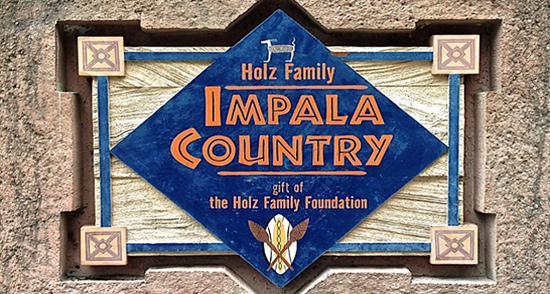 Impala Country